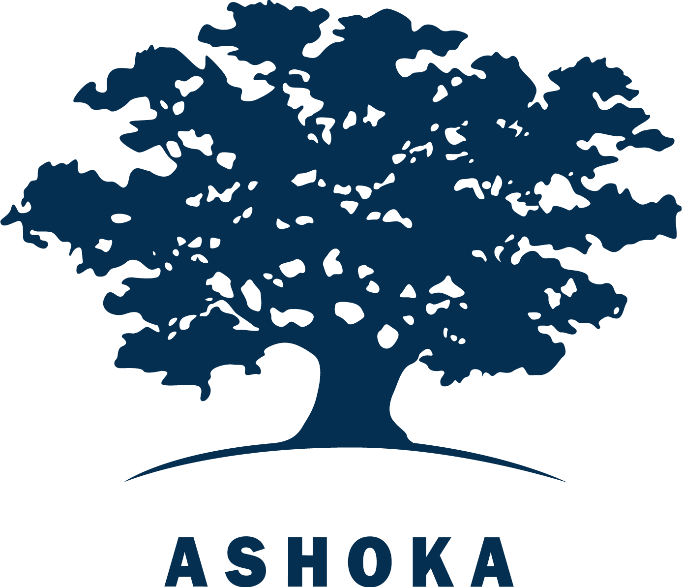 Fundatia Ashoka